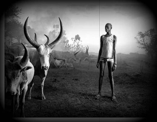 cattle-rearer-south-sudan